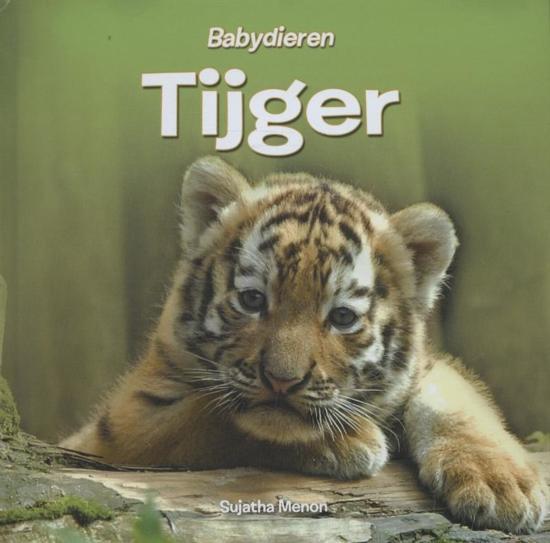 Babydieren Tijger