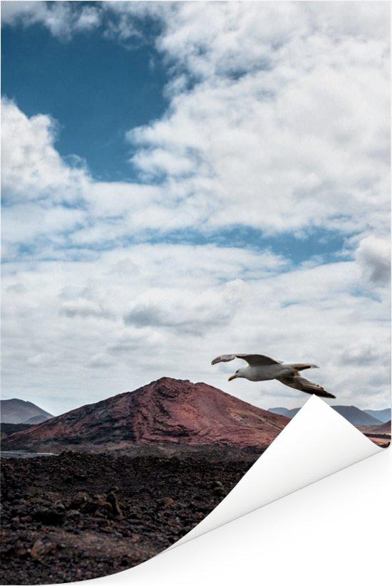Zeemeeuw vliegt over het Nationaal park Timanfaya op Lanzarote Poster 80x120 cm - Foto print op Poster (wanddecoratie woonkamer / slaapkamer)