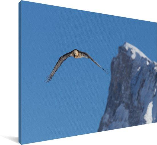 Lammergier vliegt over de Zwitserse Alpen Canvas 120x80 cm - Foto print op Canvas schilderij (Wanddecoratie woonkamer / slaapkamer)