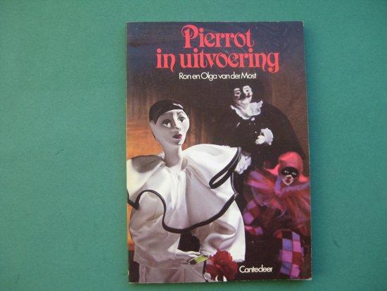 Pierrot in uitvoering - Onbekend pdf epub