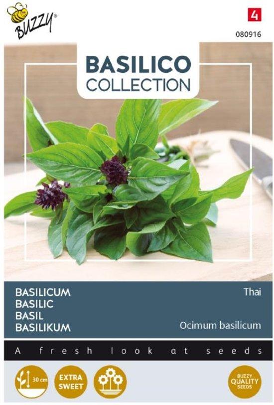 Buzzy Seeds Basilico Siam o Thai