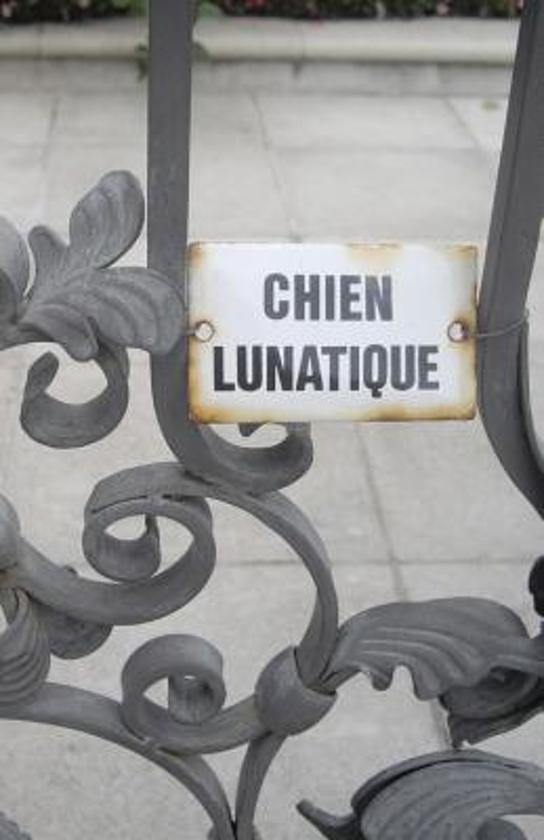 Chien Lunatique