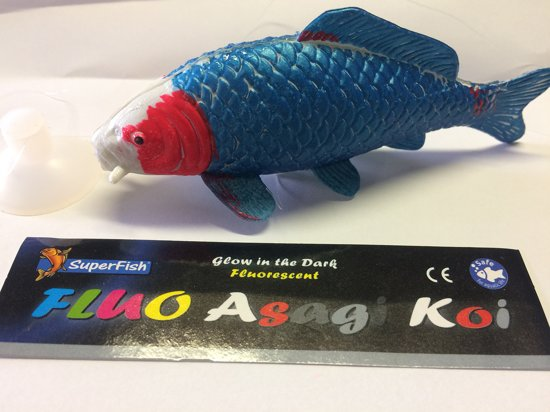 Deco fluo Asagi voor aquarium