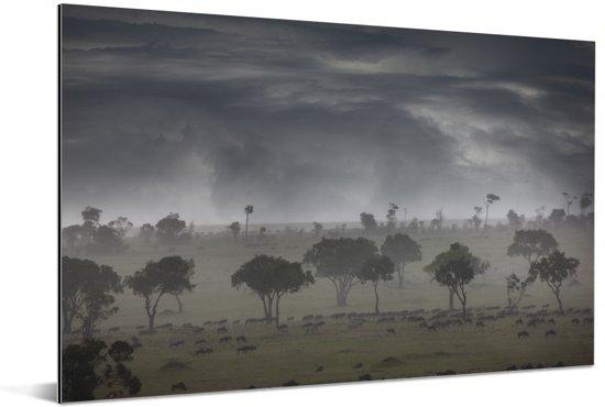Onweerswolken bij Masai Mara National Park in Kenia Aluminium 90x60 cm - Foto print op Aluminium (metaal wanddecoratie)