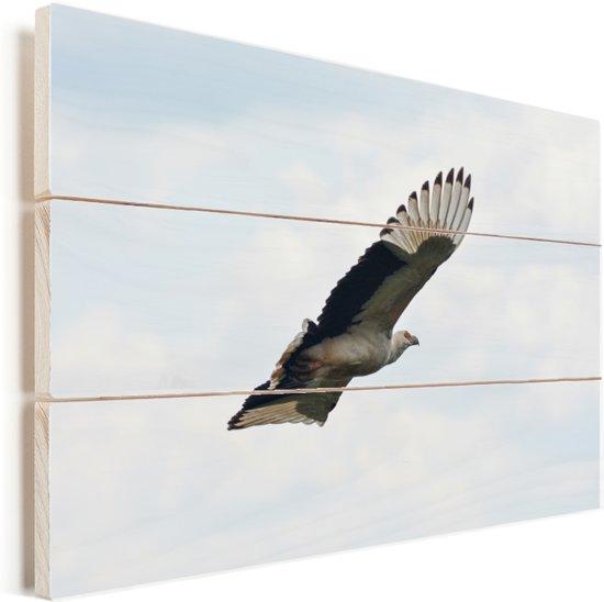 Vliegende gierarend in mooie lucht Vurenhout met planken 60x40 cm - Foto print op Hout (Wanddecoratie)