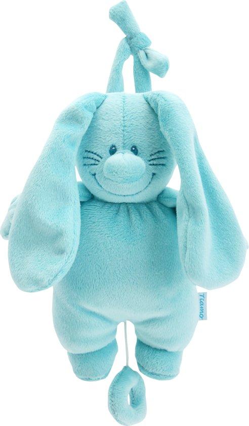 Bunny Basic Muziekdoosje Aqua