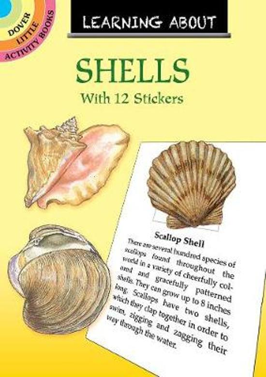 Learning About Shells
