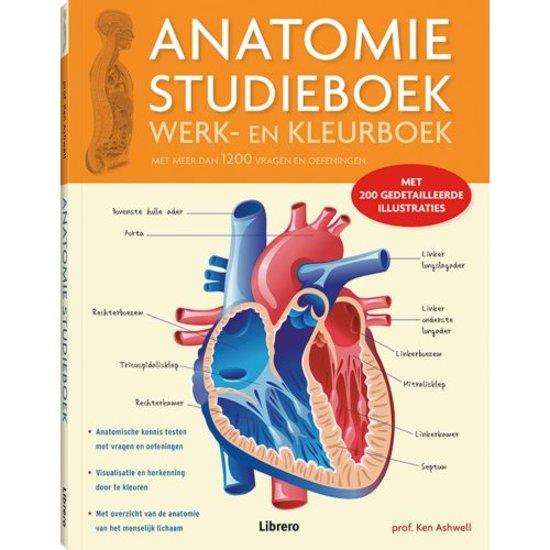bol.com   Anatomie Studieboek Werk- en Kleurboek, Ken Ashwell ...