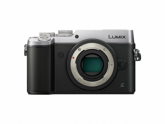 Panasonic LUMIX DMC-GX8 body in Nerem
