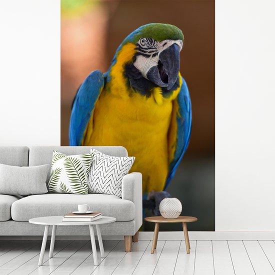 Fotobehang vinyl - Een kleurrijke blauwkeelara zit op een stokje breedte 160 cm x hoogte 240 cm - Foto print op behang (in 7 formaten beschikbaar)