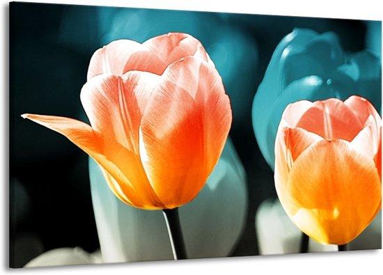 Canvas schilderij Tulp | Blauw, Oranje | 140x90cm 1Luik