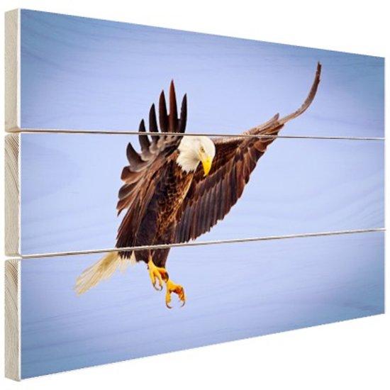 Adelaar in de aanval  Hout 60x40 cm - Foto print op Hout (Wanddecoratie)