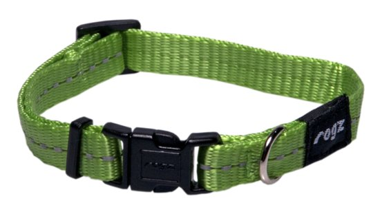 2a822d25102 bol.com | Rogz For Dogs Nitelife Halsband Lime 11 mmx20-32 cm