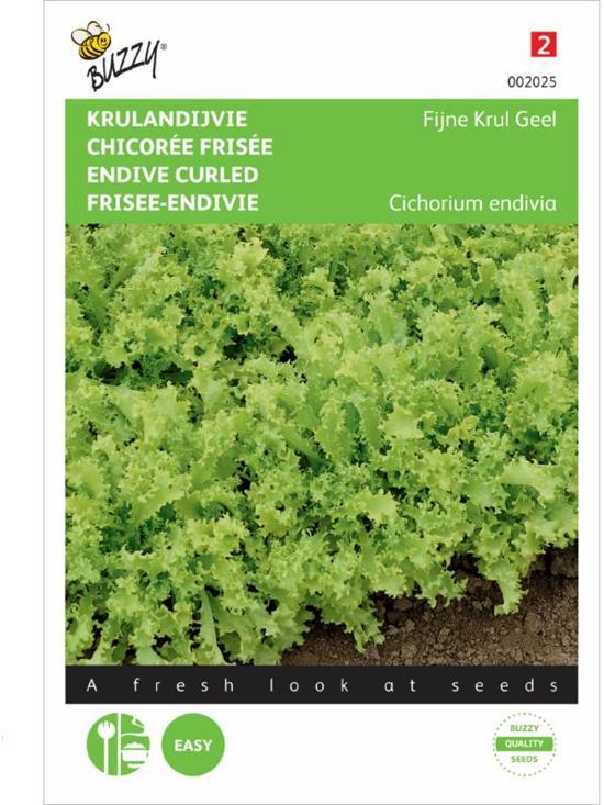 Buzzy® Krulandijvie Fijne Krul Geel/Altijd Witte