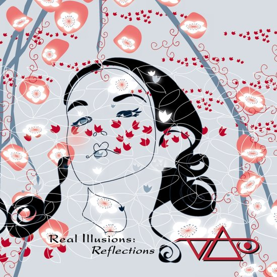 Real Illusions: Reflections