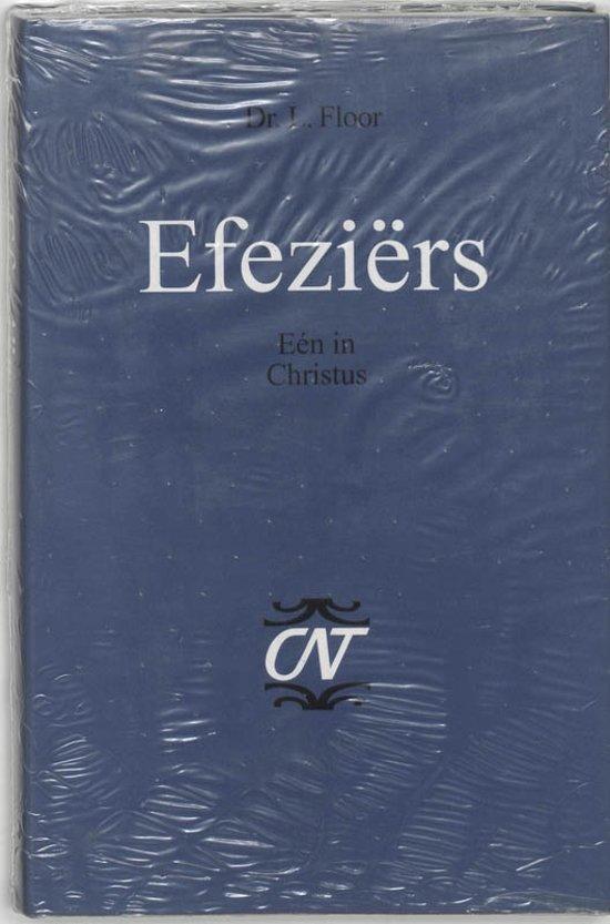 Commentaar op het Nieuwe Testament. Derde serie, Afdeling Brieven aan Paulus 1 - Efeziers