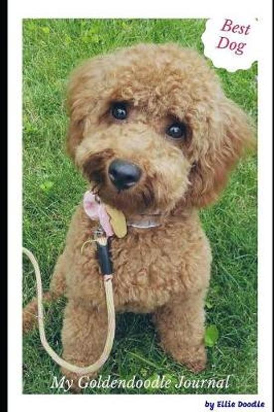 My Goldendoodle Journal: 6x9 Inch blank lined notebook diary for my snuggle dog