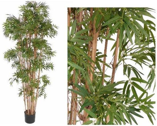 Bamboe Plant Binnen.Kunstplant Bamboe 150 Cm