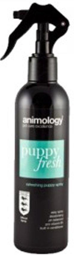 Animology Puppy Fresh Refreshing Spray - 250 ml