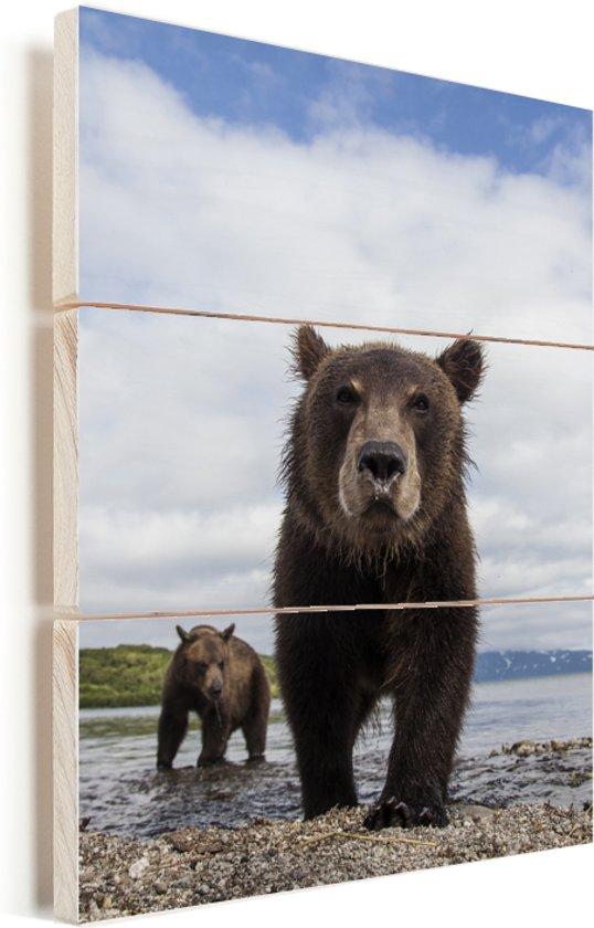 Twee Grizzlyberen bij een blauw meer Vurenhout met planken 30x40 cm - klein - Foto print op Hout (Wanddecoratie)