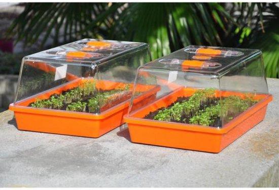 Verbazingwekkend bol.com   Slim Kweken Kweekbak kweekbak Orange House (set van 2) ES-41