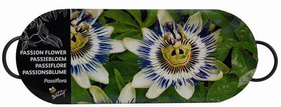 Buzzy® Teiltje Antraciet Passiflora
