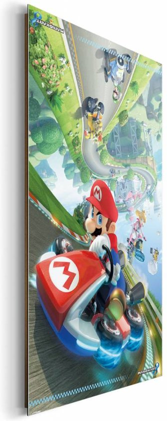 Mario Kart 8  - Schilderij 60 x 90 cm