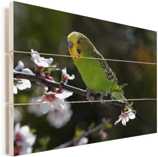 Parkiet op een kersenbloesem Vurenhout met planken 160x120 cm - Foto print op Hout (Wanddecoratie) XXL / Groot formaat!