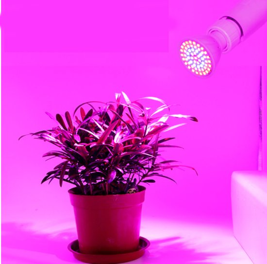 LED Lampada cfl Groeilamp E27 110 V 220 V Volledige Spectrum Indoor Plant Lamp Voor Planten Vegs Hydrocultuur Systeem Plant LED Lampada cfl Grow Light E27  110V 220V Full Spectrum Indoor Plant Lamp For Plants Vegs Hydroponi