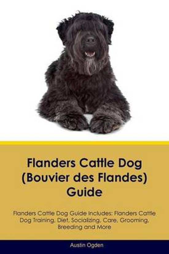 Flanders Cattle Dog (Bouvier Des Flandes) Guide Flanders Cattle Dog Guide Includes