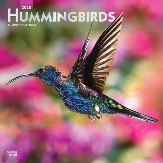 Hummingbirds 2020 Square Wall Calendar