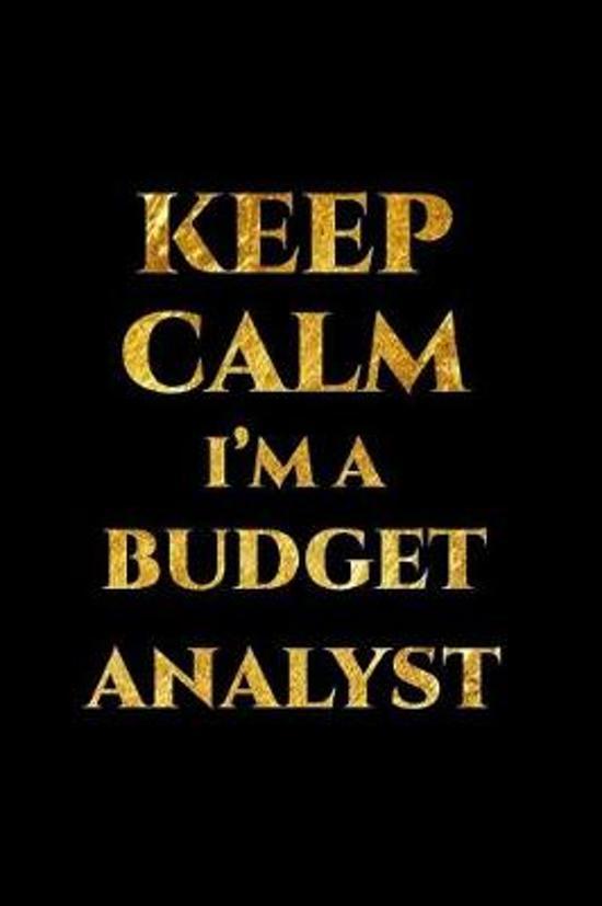 Keep Calm I'm a Budget Analyst