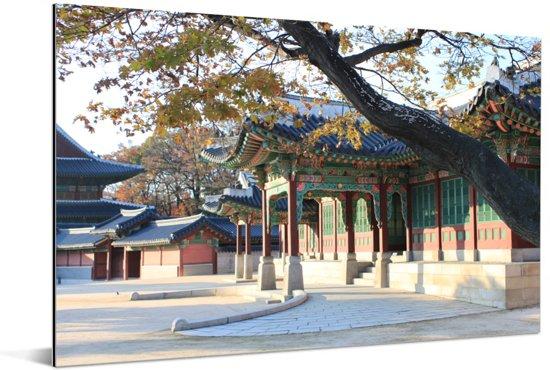 Mooi hangende boom over de paleizen bij Changdeokgung Aluminium 30x20 cm - klein - Foto print op Aluminium (metaal wanddecoratie)