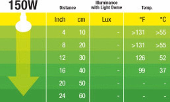 Heat Glo Infrarood 150W/R30