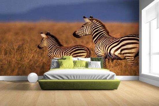 Behang Kinderkamer Zebra : Bol.com moeder en baby zebra fotobehang 380x265