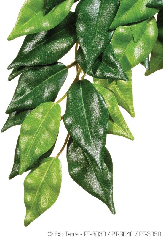 Exo Terra Terrarium decoratie Ficus - Groen - Large