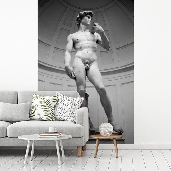 Fotobehang vinyl - Michelangelo's standbeeld van David in Italië breedte 260 cm x hoogte 400 cm - Foto print op behang (in 7 formaten beschikbaar)