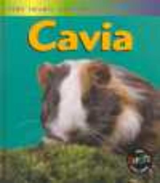 Het leven van een... - Cavia