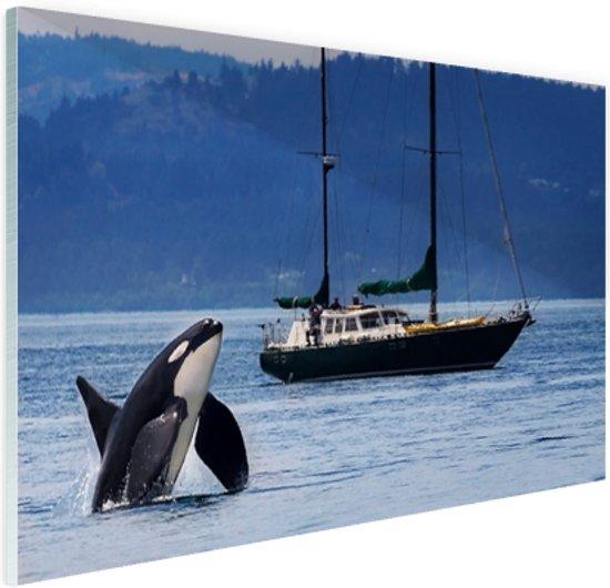 Orka bij een boot Glas 90x60 cm - Foto print op Glas (Plexiglas wanddecoratie)