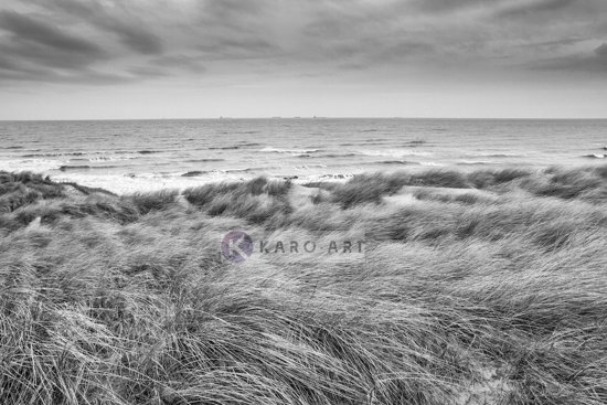 Schilderij - De Noordzee en duinen in zwart en wit
