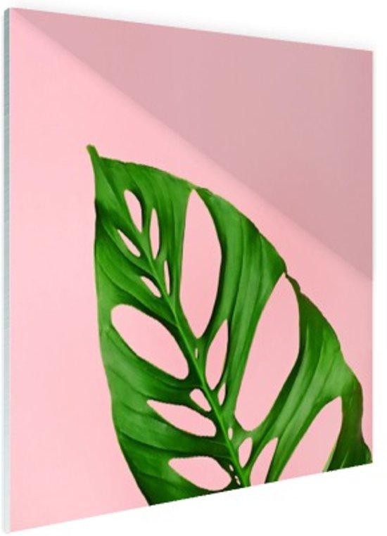 Botanisch blad met roze achtergrond Glas 50x50 cm - Foto print op Glas (Plexiglas wanddecoratie)