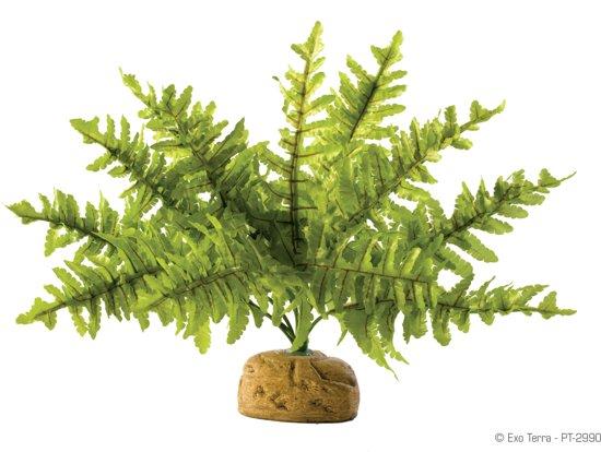 Exo Terra - Kunstplant voor Terrarie - Boston Fern / Varen - Small - 6,5x5x21cm