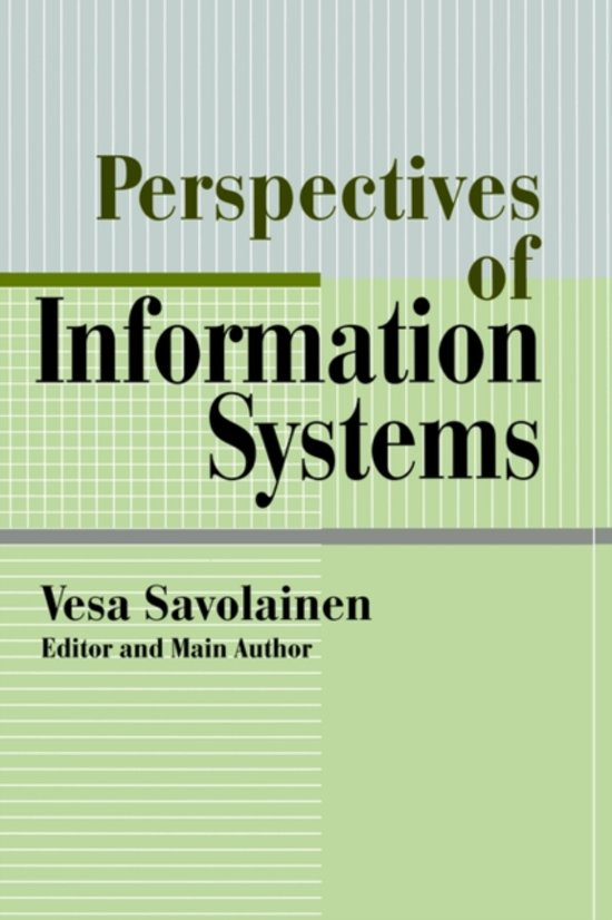 perspectives of information system