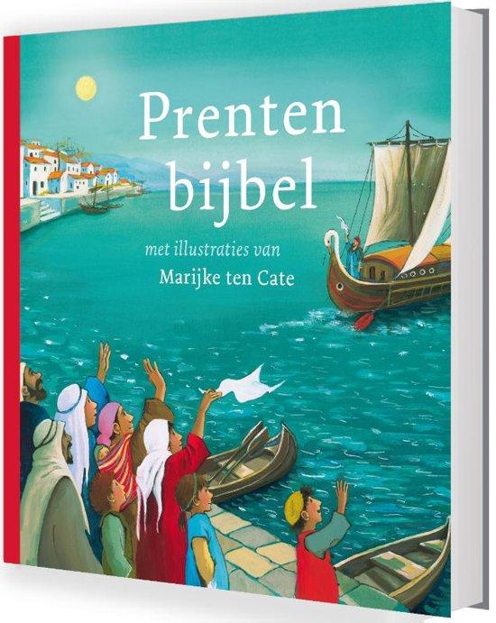 Boek cover Prentenbijbel van Liesbeth van Binsbergen (Hardcover)
