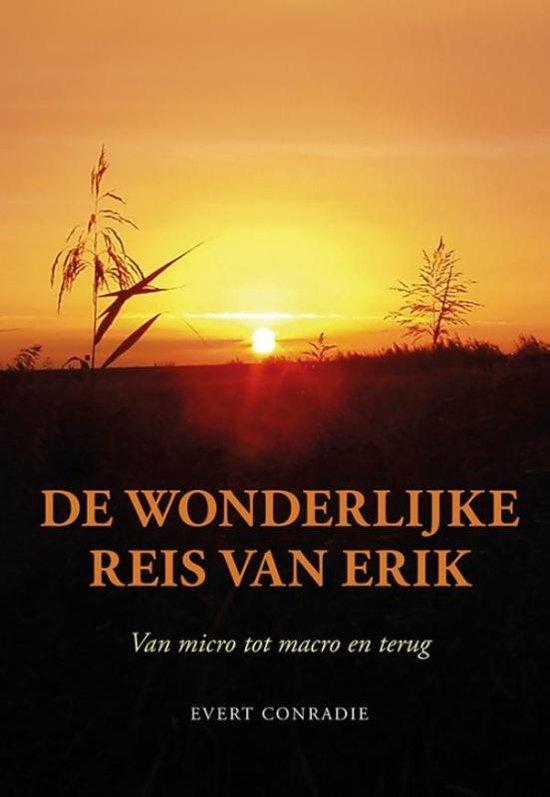De wonderlijke reis van Erik