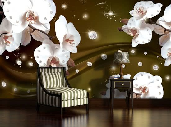 Fotobehang Orchideeën, Bloemen | Wit | 312x219cm