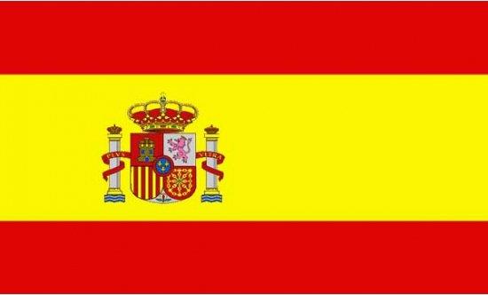 Mini vlag Spanje 60 x 90 cm