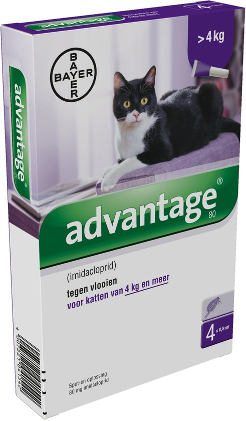 Advantage 80 Anti vlooienmiddel Kat - 4 pipetten