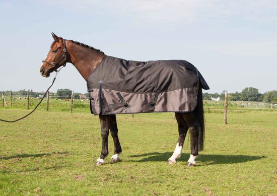 Harry's Horse Deken Xtreme-1200 300gr Stretch limo 165cm
