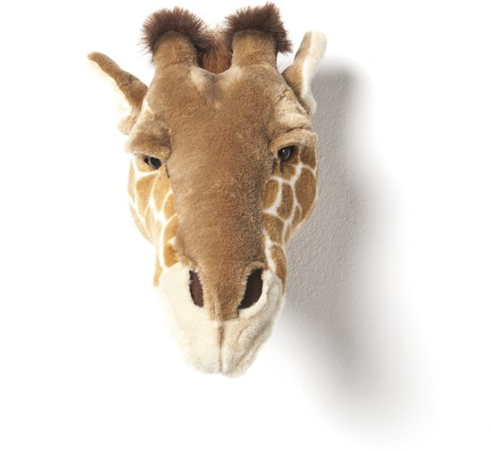 Bibib Dierenkop Giraf